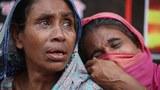 201123_Tazrin-Bangla_1000.jpg